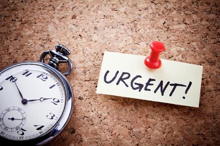 nov 1 urgent