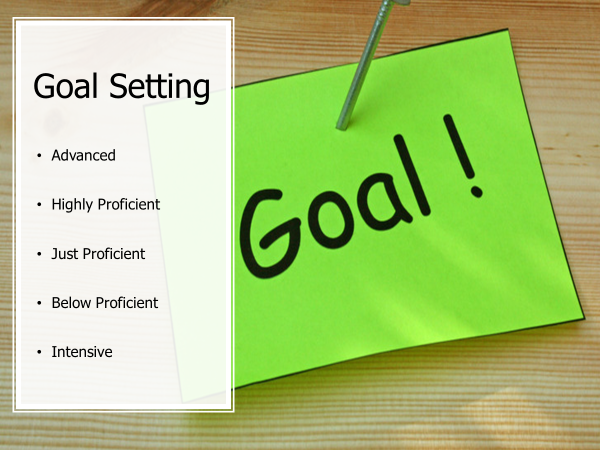Goal Setting-advanced,highly proficient,just, below proficient,intensive