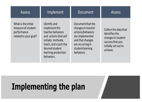 Implementation Plan Steps: Assess, Implement, Document and Assess