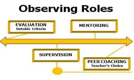 Observing Roles Chart